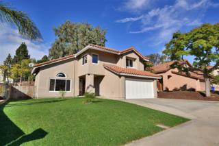 983  Paseo Entrada  , Chula Vista, CA 91910 (#140062658) :: The Marelly Group | Realty One Group