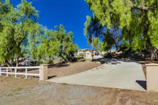 14764  Fruitvale Road  , Valley Center, CA 92082 (#140062751) :: Pickford Realty LTD, DBA Berkshire Hathaway HomeServices California Properties