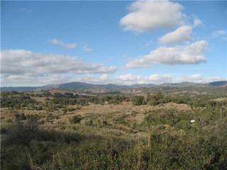 4028  Eagle Peak Road  14, Julian, CA 92036 (#140062753) :: Pickford Realty LTD, DBA Berkshire Hathaway HomeServices California Properties
