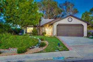 1308  Knoll Dr  , Oceanside, CA 92054 (#140062837) :: The Marelly Group | Realty One Group