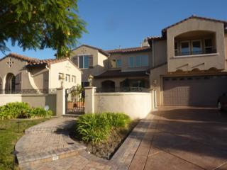 2856  Falling Waters Ct  , Chula Vista, CA 91915 (#140062969) :: The Marelly Group | Realty One Group