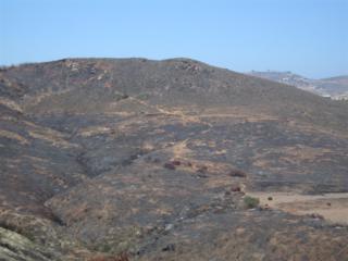 000  Artesian Trail  -, Solana Beach, CA 92075 (#140063021) :: Whissel Realty