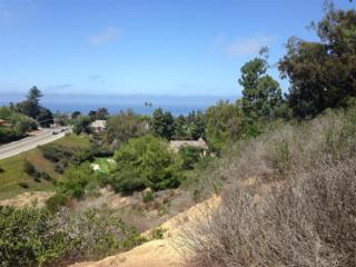 1456  Nautilus  0, La Jolla, CA 92037 (#140063108) :: Pickford Realty LTD, DBA Berkshire Hathaway HomeServices California Properties