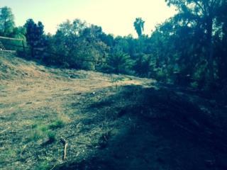 9323  Carmichael Drive  00, La Mesa, CA 91941 (#140063160) :: Whissel Realty