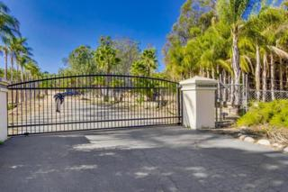 Lot 2  Olive Hill  2, Fallbrook, CA 92028 (#140063270) :: The Marelly Group | Realty One Group
