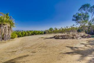 Lot 4  Olive Hill  4, Fallbrook, CA 92028 (#140063322) :: The Marelly Group | Realty One Group