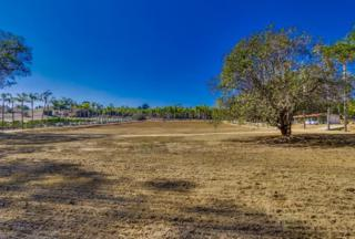 Lot 3  Olive Hill  3, Fallbrook, CA 92028 (#140063323) :: The Marelly Group | Realty One Group