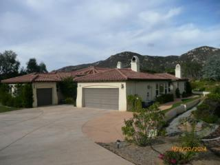 25647  Rue De Lac  , Escondido, CA 92026 (#140065264) :: The Marelly Group | Realty One Group