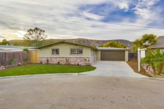 9114  Todos Santos  , Santee, CA 92071 (#140065612) :: The Marelly Group | Realty One Group