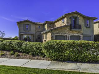 5526  Alexandrine  , Oceanside, CA 92057 (#140065936) :: The Marelly Group | Realty One Group