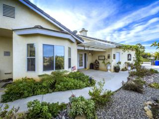 1077  Hughes Lane  , Fallbrook, CA 92028 (#150004219) :: The Marelly Group | Realty One Group