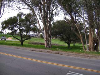 502 E Elder  ., Fallbrook, CA 92028 (#150004336) :: The Marelly Group | Realty One Group