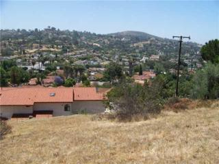 Coronado Ave  2, Spring Valley, CA 91977 (#150004444) :: The Marelly Group | Realty One Group