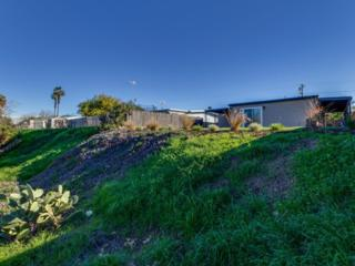 6120  Thorn Street  , San Diego, CA 92115 (#150004622) :: Whissel Realty