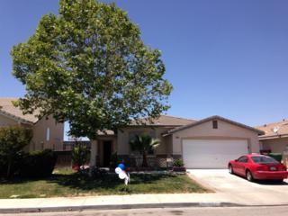 30243  Lakeport Street  , Menifee, CA 92584 (#150004815) :: The Houston Team | Coastal Premier Properties