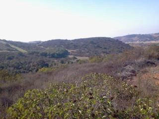 89.88 acres  Old River Road  1, Bonsall, CA 92003 (#150004944) :: The Marelly Group | Realty One Group