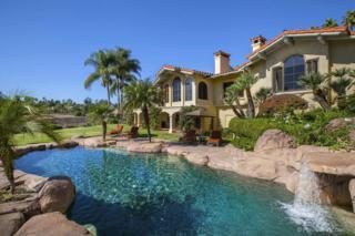 16540  Los Barbos  , Rancho Santa Fe, CA 92067 (#150005013) :: The Marelly Group | Realty One Group