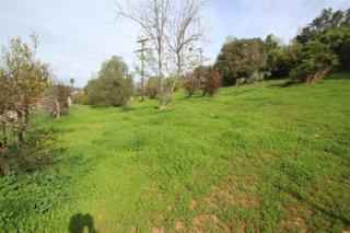 461  Golden  461, Fallbrook, CA 92028 (#150005416) :: Whissel Realty
