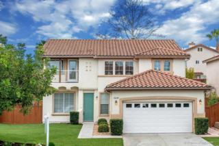 12620  Via Las Lenas  , San Diego, CA 92129 (#150005582) :: The Houston Team | Coastal Premier Properties