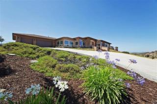 9902  Indian Creek Ln  , El Cajon, CA 92021 (#150006901) :: Allison James Estates and Homes