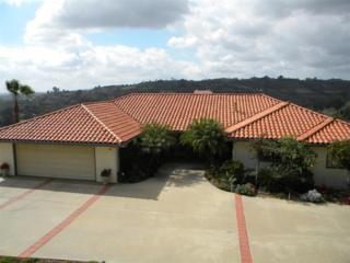 2908  Lakemont Drive  , Fallbrook, CA 92028 (#150010844) :: Whissel Realty