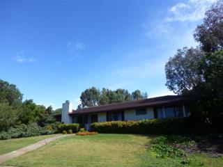 6399  Castejon Dr  , La Jolla, CA 92037 (#150011228) :: Allison James Estates and Homes