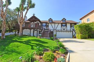 1832  Campesino Place  , Oceanside, CA 92054 (#150012373) :: The Marelly Group | Realty One Group