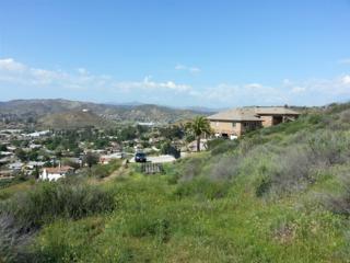 000  Lea Terrace  16, Santee, CA 92071 (#150015890) :: Century 21 Award - Ruth Pugh Group