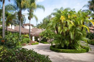 17677  Calle Mayor  , Rancho Santa Fe, CA 92067 (#150016568) :: Pickford Realty LTD, DBA Berkshire Hathaway HomeServices California Properties