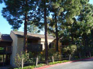 3128  Via Alicante  S, La Jolla, CA 92037 (#150020247) :: Pickford Realty LTD, DBA Berkshire Hathaway HomeServices California Properties