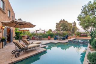 136  Hummingbird Hill  , Encinitas, CA 92024 (#150020724) :: The Marelly Group | Realty One Group