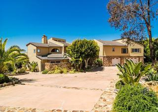 7103  Argonauta  , Carlsbad, CA 92009 (#150021421) :: The Marelly Group   Realty One Group