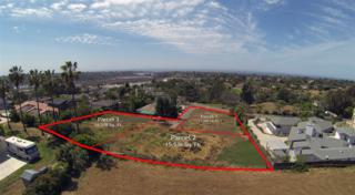 1814  Avocado Rd  1, Oceanside, CA 92054 (#150021864) :: The Marelly Group | Realty One Group
