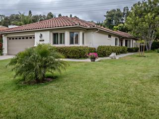 14949  Tercer Verde  , Del Mar, CA 92014 (#150022175) :: The Marelly Group | Realty One Group