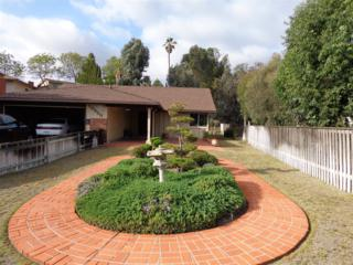 10550  Hermanos Ct.  , San Diego, CA 92124 (#150025222) :: The Marelly Group   Realty One Group