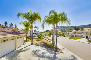 8508  Mesa Heights  , Santee, CA 92071 (#150025765) :: The Marelly Group | Realty One Group