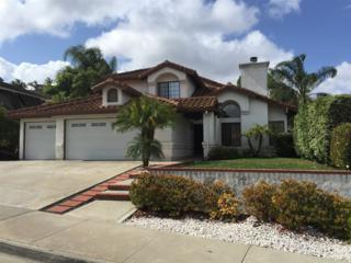 1215 Larchwood  Drive  , Oceanside, CA 92056 (#150026505) :: The Marelly Group   Realty One Group