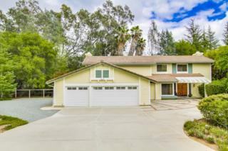 15855  Prairie Vista  , Poway, CA 92064 (#150027705) :: The Houston Team | Coastal Premier Properties