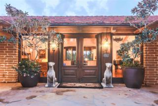 6083  Mimulus  , Rancho Santa Fe, CA 92067 (#150027862) :: The Marelly Group | Realty One Group