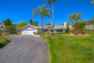 1741  Costa Verde  , Vista, CA 92084 (#150028054) :: The Marelly Group | Realty One Group