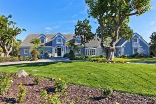 6006  Avenida Cuatro Vientos  , Rancho Santa Fe, CA 92067 (#150028404) :: Pickford Realty LTD, DBA Berkshire Hathaway HomeServices California Properties