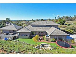 650  Yucca Road  , Fallbrook, CA 92028 (#150029045) :: The Marelly Group | Realty One Group