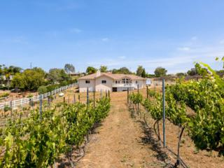 2060  Fuerte St  , Fallbrook, CA 92028 (#150029124) :: The Marelly Group | Realty One Group