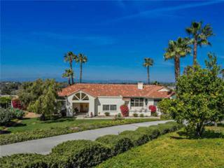 2486  Via Del Aquacate  , Fallbrook, CA 92028 (#140012376) :: The Marelly Group   Realty One Group