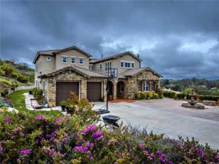 310  Highland Oaks Court  , Fallbrook, CA 92028 (#140016169) :: The Marelly Group | Realty One Group
