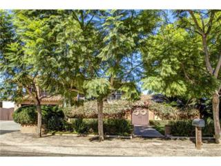 444 E Glaucus Street  , Encinitas, CA 92024 (#140020212) :: The Marelly Group | Realty One Group
