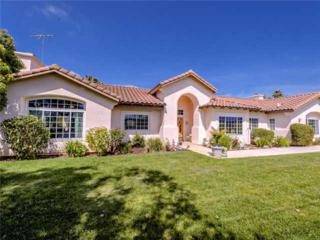 31726  Nira Lane  , Bonsall, CA 92003 (#140022614) :: The Marelly Group   Realty One Group