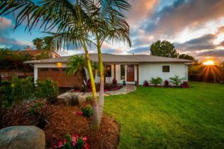 1386  Rubenstein Ave  , Cardiff, CA 92007 (#140031878) :: The Marelly Group | Realty One Group