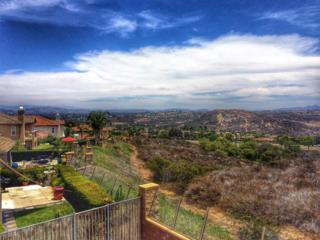 3561  Rock Ridge Road  , Carlsbad, CA 92010 (#140036278) :: The Marelly Group   Realty One Group