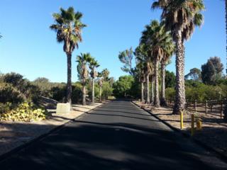 00  Calle Hermosa  11,12, Rancho Santa Fe, CA 92075 (#140058025) :: Pickford Realty LTD, DBA Berkshire Hathaway HomeServices California Properties